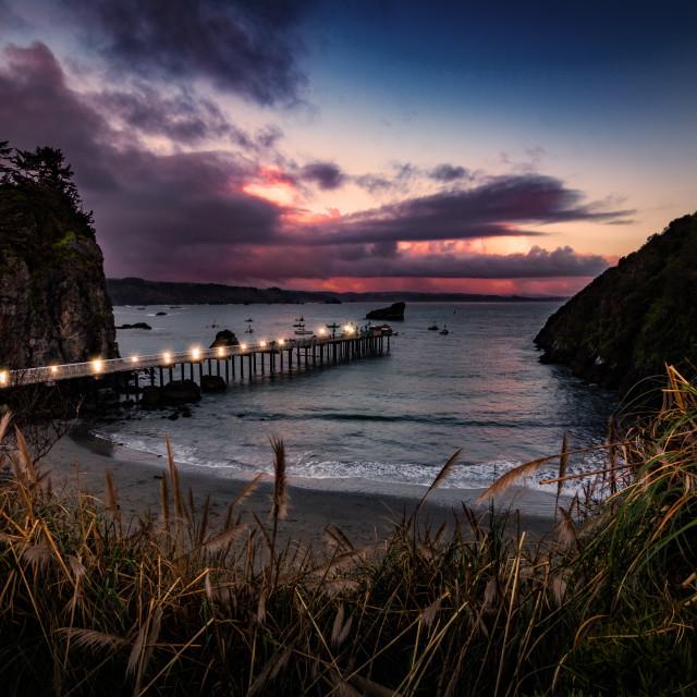 """""""Trinidad California Pier and Pacific Ocean"""" stock image"""