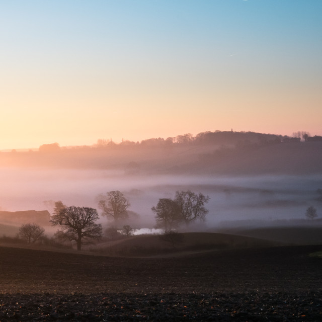 """""""Pond in the Mist"""" stock image"""