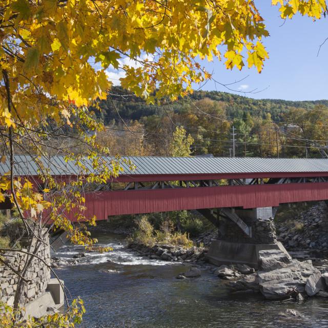 """Red Wooden bridge, USA"" stock image"
