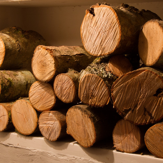 """Wood pile"" stock image"