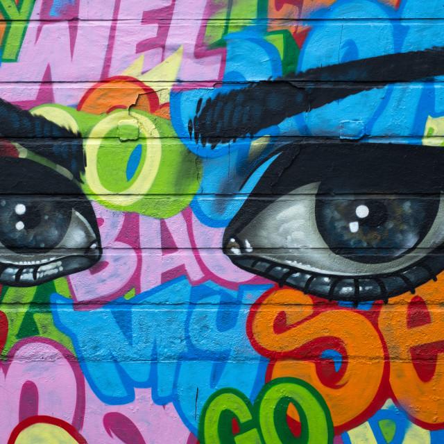 """""""Soulful Eyes"""" stock image"""