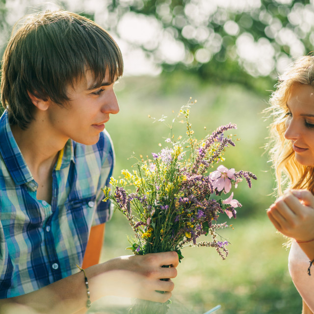"""teenage couple dating on picnic"" stock image"