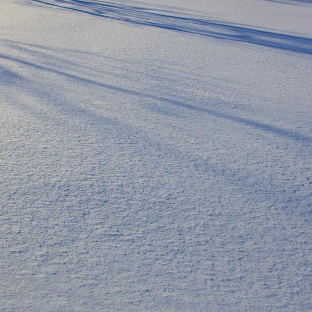 """Snow in evening light"" stock image"