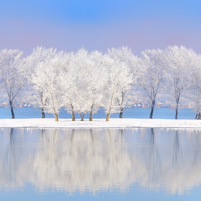 """Danube river in winter time"" stock image"