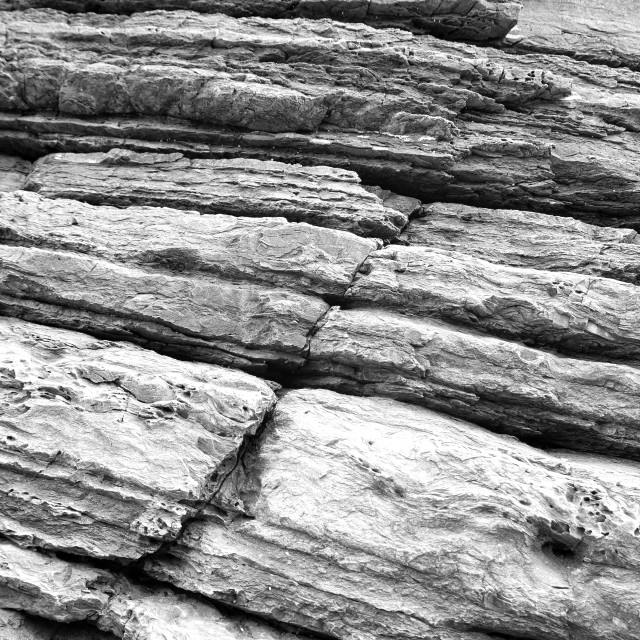 """Sea rock cliff texture. Black and white photo"" stock image"