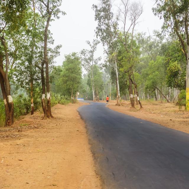 """Black asphalt road passing through Ballavpur National Park jungl"" stock image"