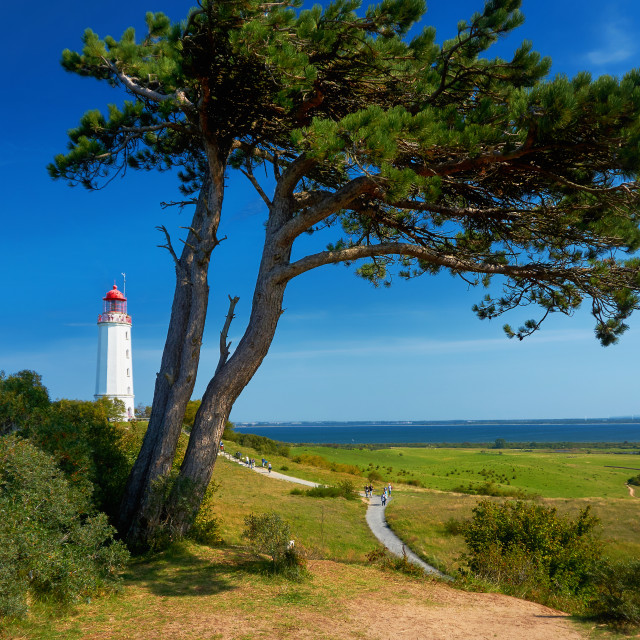 """famous white lighthouse tourism sight close to Kloster"" stock image"