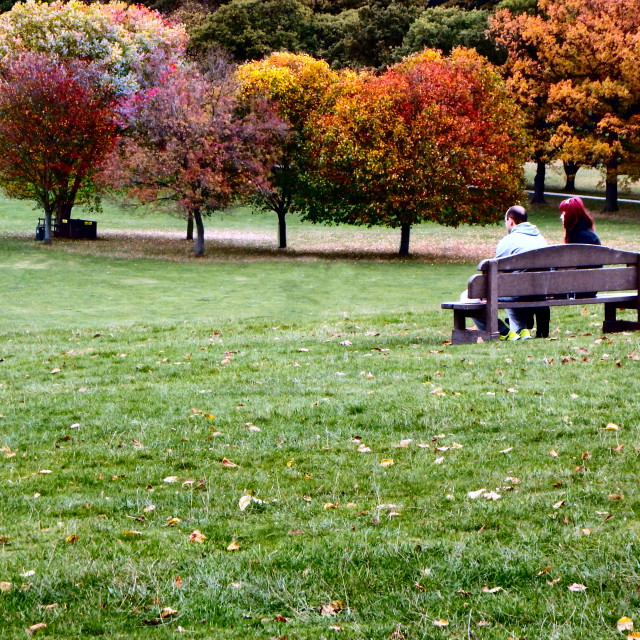 """Couple Talking On A Park Bench"" stock image"