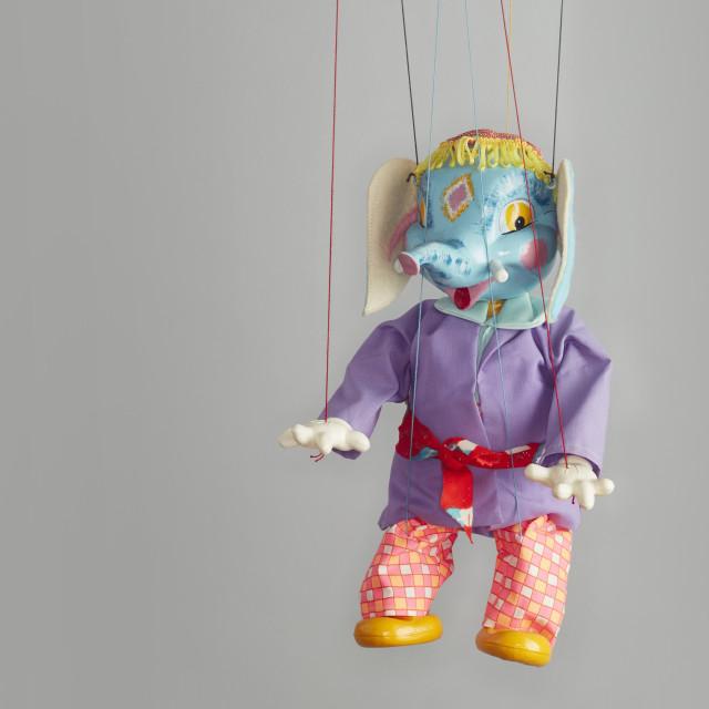 """Pelham puppet elephant"" stock image"