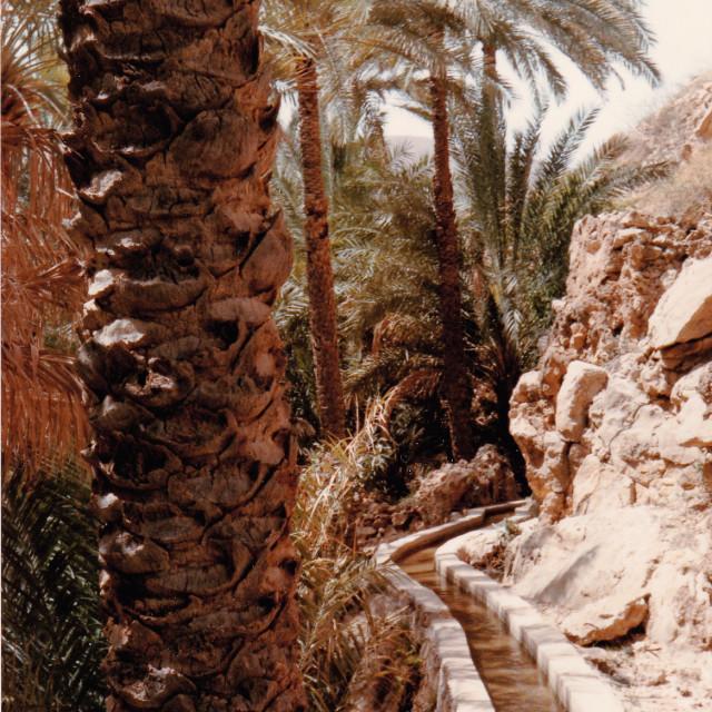 """Falaj, Oman"" stock image"