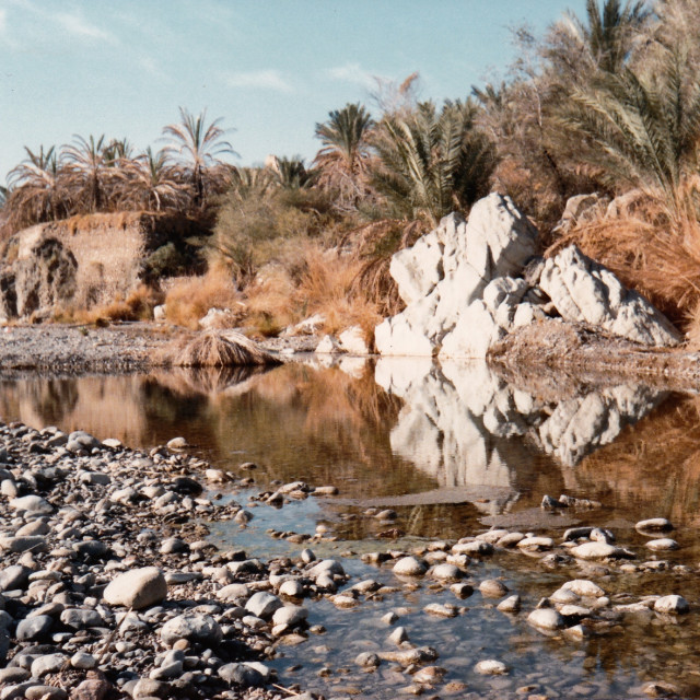 """Oman - after the rain"" stock image"