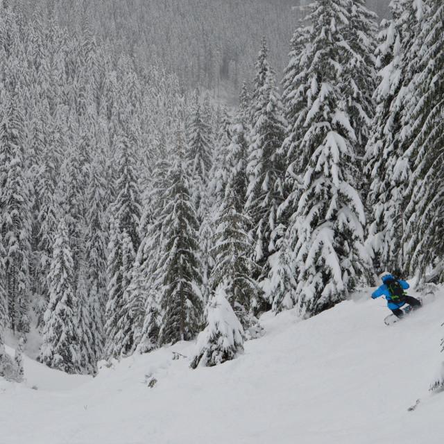 """Snowboarding in Slovakia"" stock image"