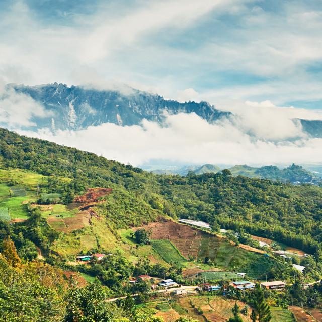 """""""Landscape with Mount Kinabalu"""" stock image"""
