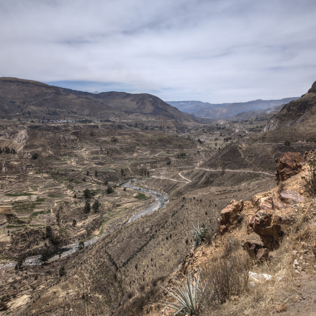 """The Colca Canyon Peru"" stock image"