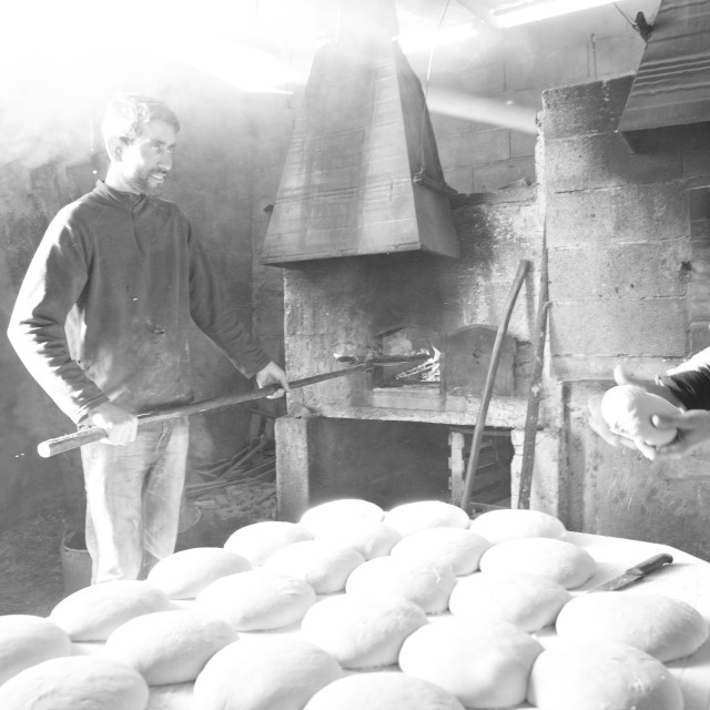 """Traditional bread production"" stock image"