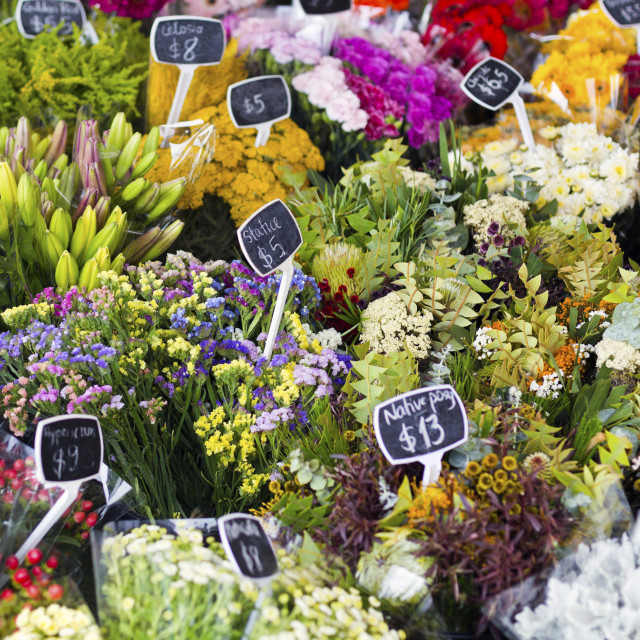 """Flowers for Sale"" stock image"