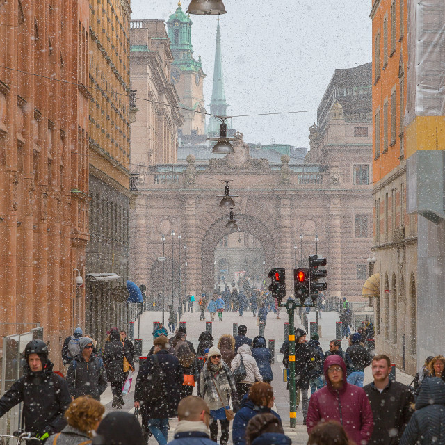 """Snowy Stockholm"" stock image"