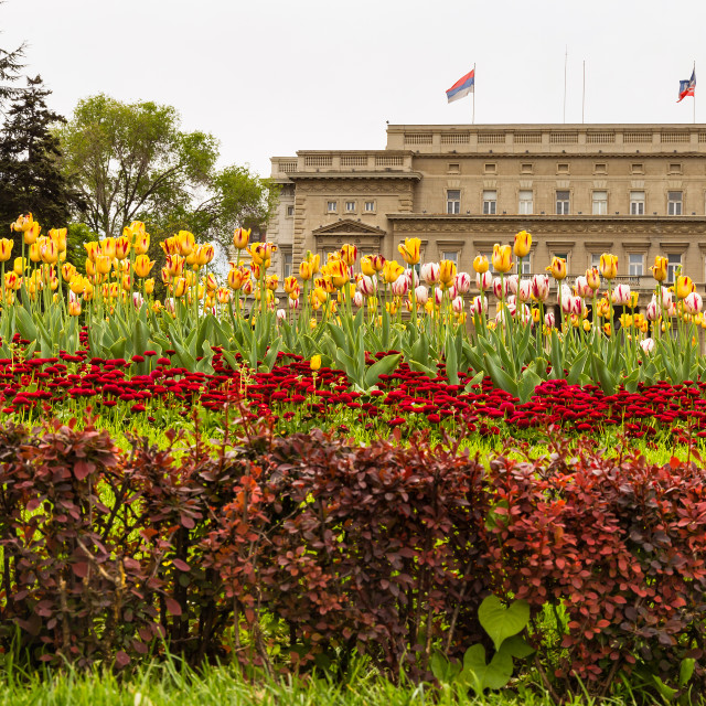 """""""Part of city assembly and beautiful park"""" stock image"""