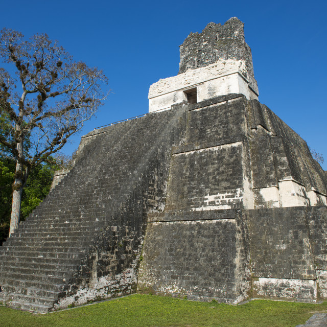"""Pyramid (Temple II) in the ancient Maya City of Tikal in Guatemala, Central America"" stock image"
