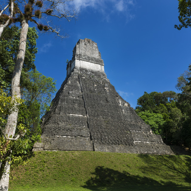 """Pyramid in the ancient Maya City of Tikal in Guatemala, Central America"" stock image"