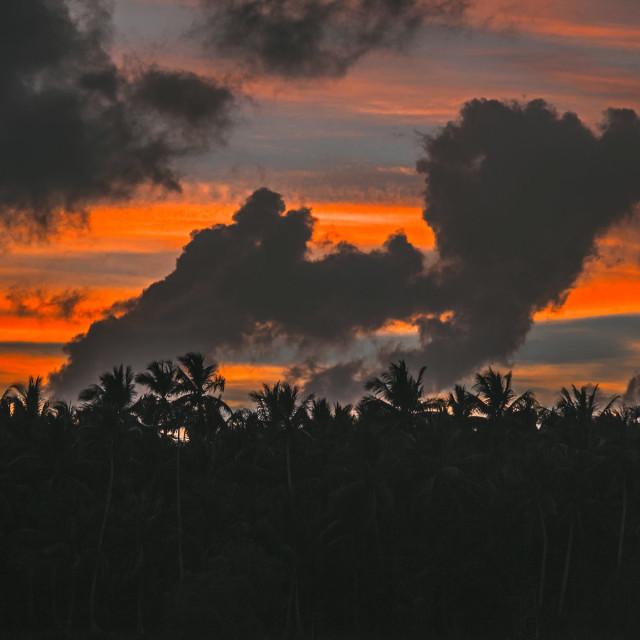 """Sunset in Siargao island"" stock image"