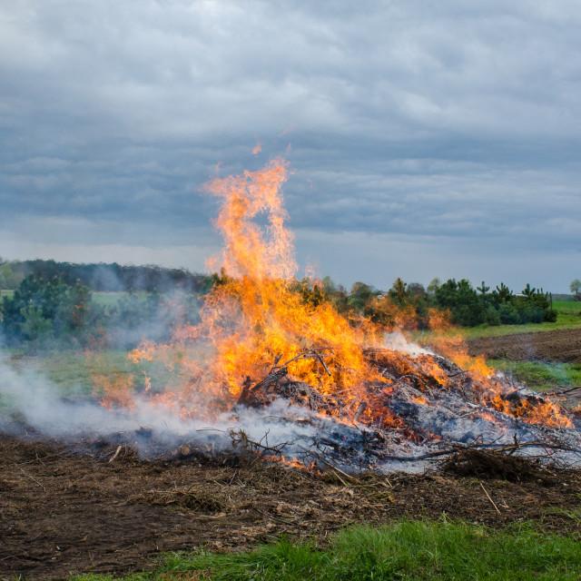 """Bonfire in the field"" stock image"