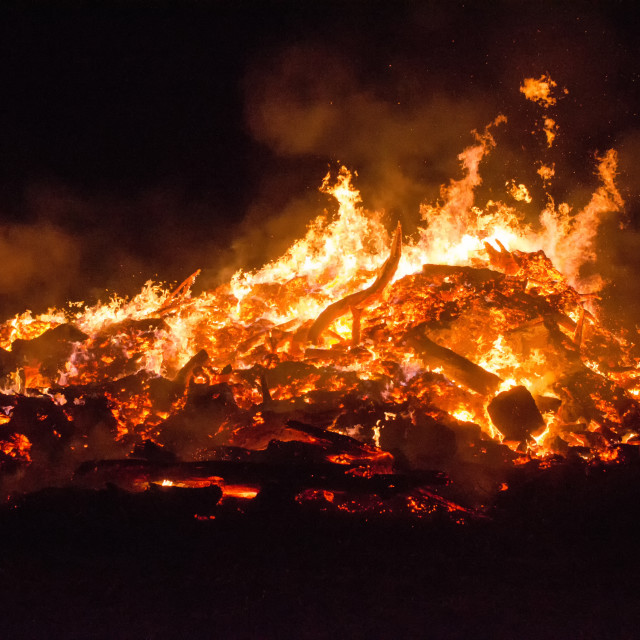 """""""Beauty Of Fire"""" stock image"""