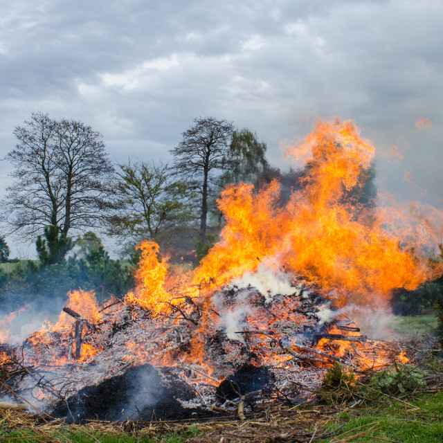 """""""Rural Fire"""" stock image"""