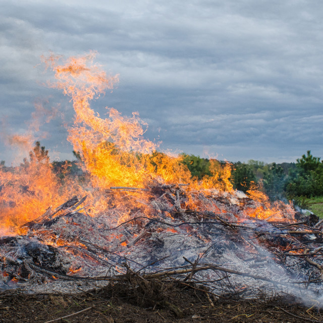 """""""Fire Reaching Into The Sky"""" stock image"""