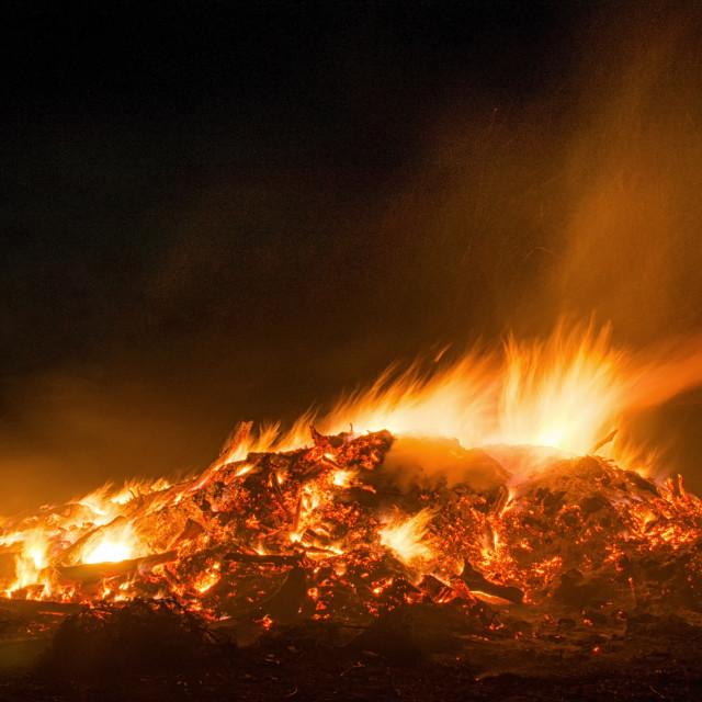 """Glowing Bonfire"" stock image"