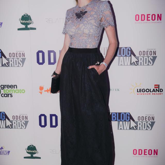 """The National UK Blog Awards at Park Plaza Westminster Bridge,London"" stock image"