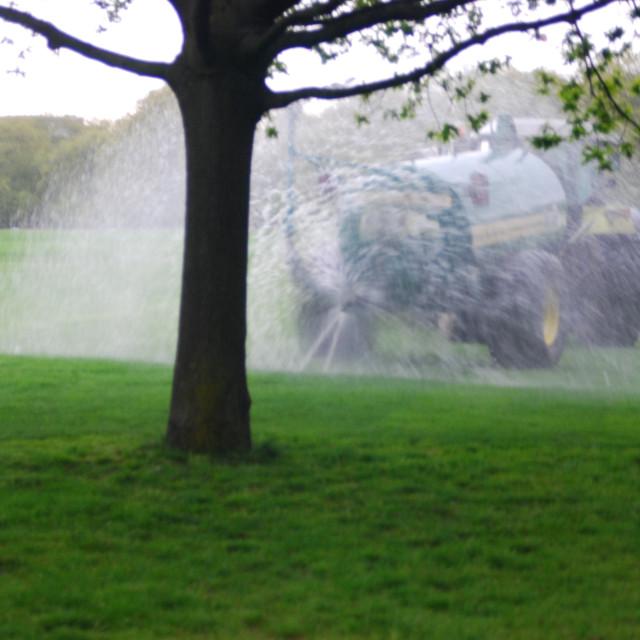 """Hyde park lawns"" stock image"