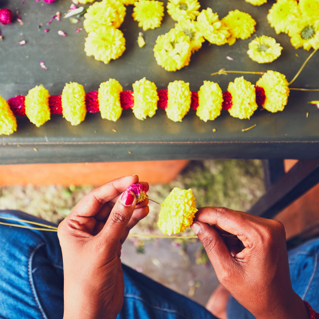"""Flower seller preparation garlands for hindu religious ceremony - Kuala Lumpur, Malaysia - selective focus"" stock image"