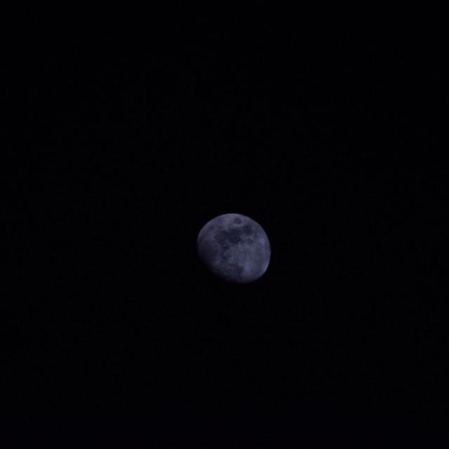 """Night moon"" stock image"