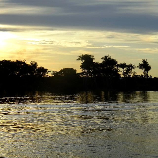 """Evening on the River Amazon"" stock image"