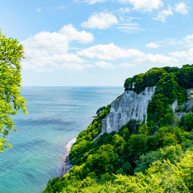 """""""Chalk Cliff at the Baltic Sea"""" stock image"""