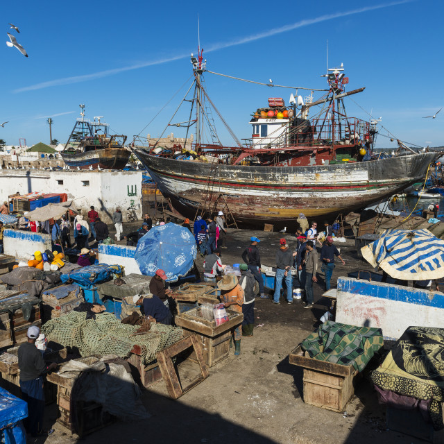 """Essaouira, Morocco - April 15, 2015: People in the fishing harbour of Essaoira in the Atlantic Coast of Morocco, Northern Africa."" stock image"