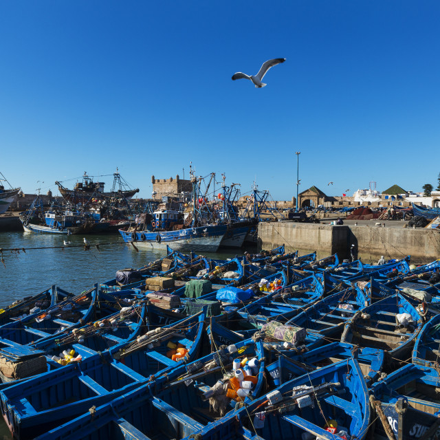 """""""View the fishing harbour of Essaoira with the traditional fishing boats in the Atlantic Coast of Morocco, Northern Africa."""" stock image"""