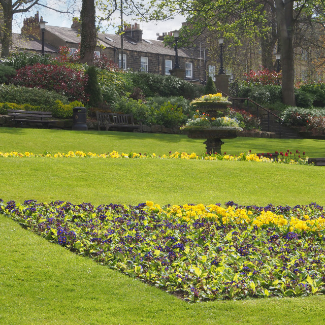 """""""One of the many gardens in the Montpellier district of Harrogate"""" stock image"""