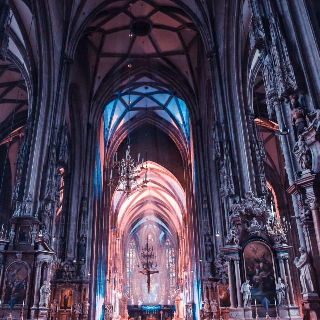 """St. stephen's Cathedral"" stock image"