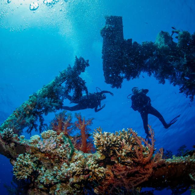 """Ship Wreck"" stock image"