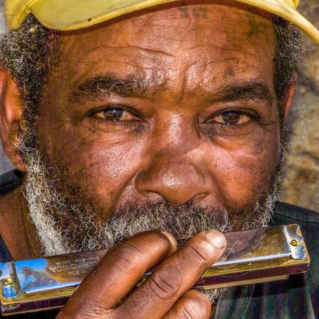 """Tony's harmonica"" stock image"
