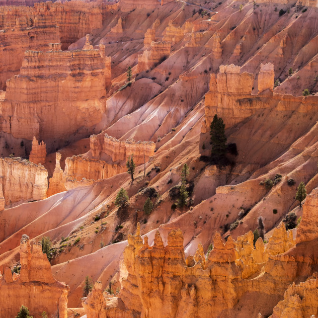 """""""A partial view of Byrce Canyon, USA."""" stock image"""