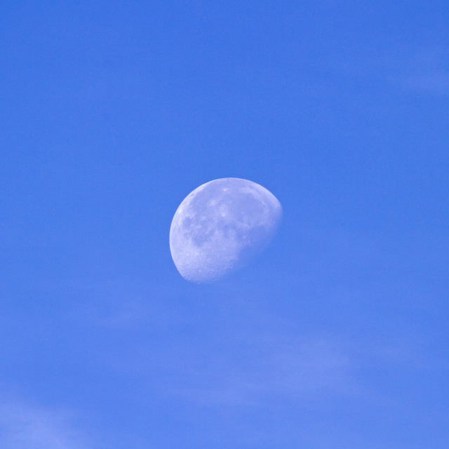 """""""September Moon"""" stock image"""