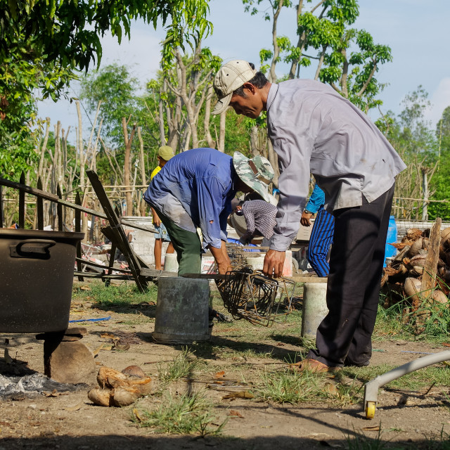 """Workers are working in a garden of countryside of southern Vietn"" stock image"