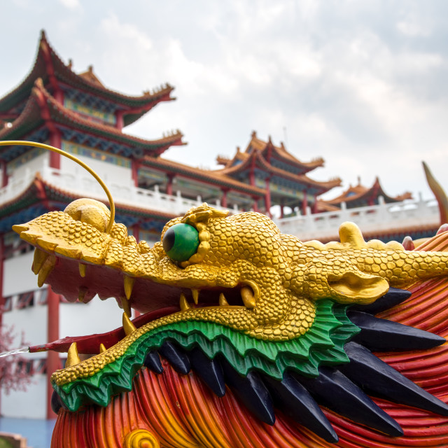 """Colourful Chinese dragon"" stock image"