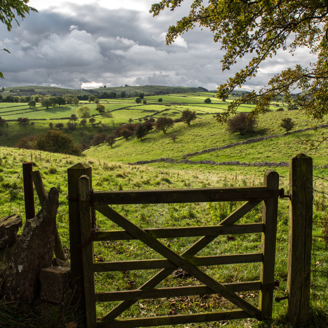 """british country gate"" stock image"
