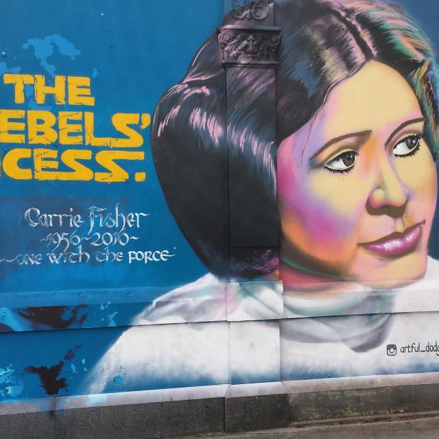 """The rebels princess"" stock image"
