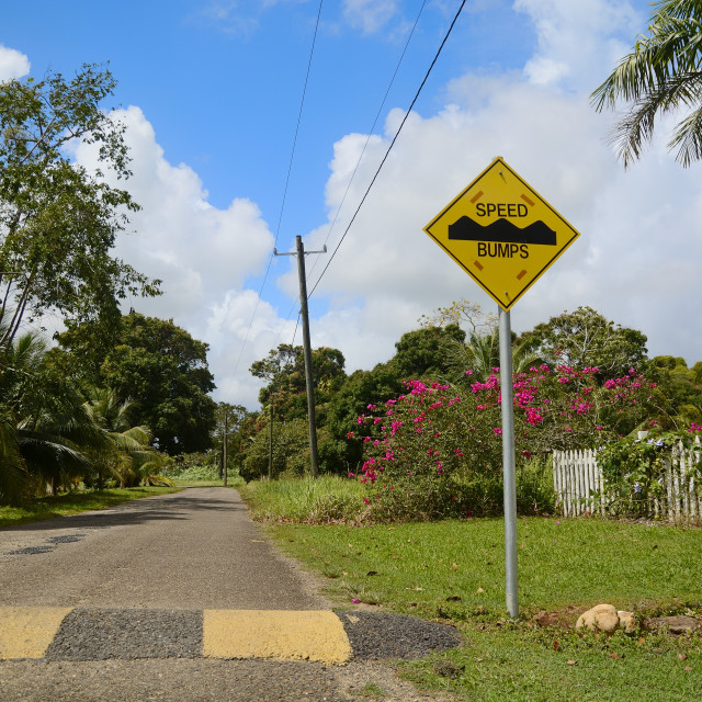 """Speed bump sign"" stock image"
