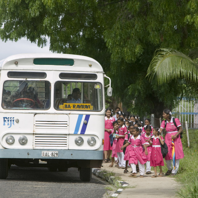 """Indian school children catching the school bus on Fiji"" stock image"